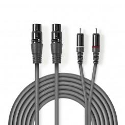 2x XLR-3-Pol-Buchse – 2x Cinch-Stecker | 1,5 m | Grau