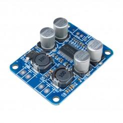 Verstärker-Board Mono 60W